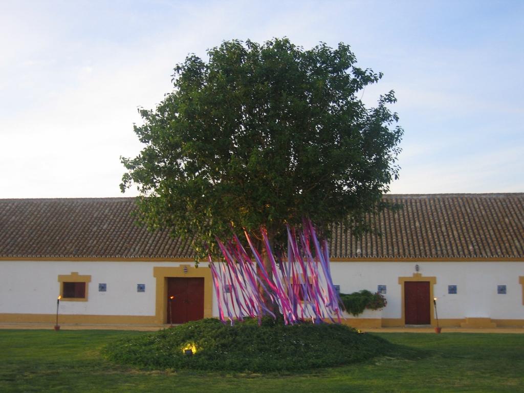 Árbol con lazos morados en Dehesa Bolaños