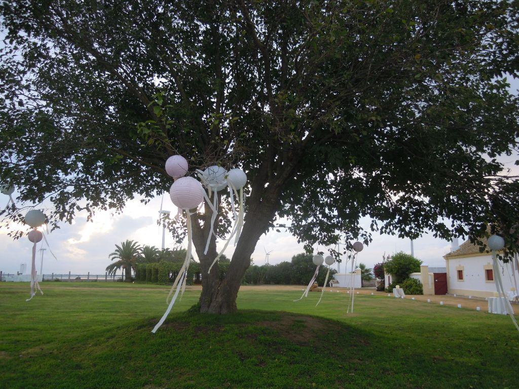 Árbol con lazos blancos y pompones de papel en Dehesa Bolaños