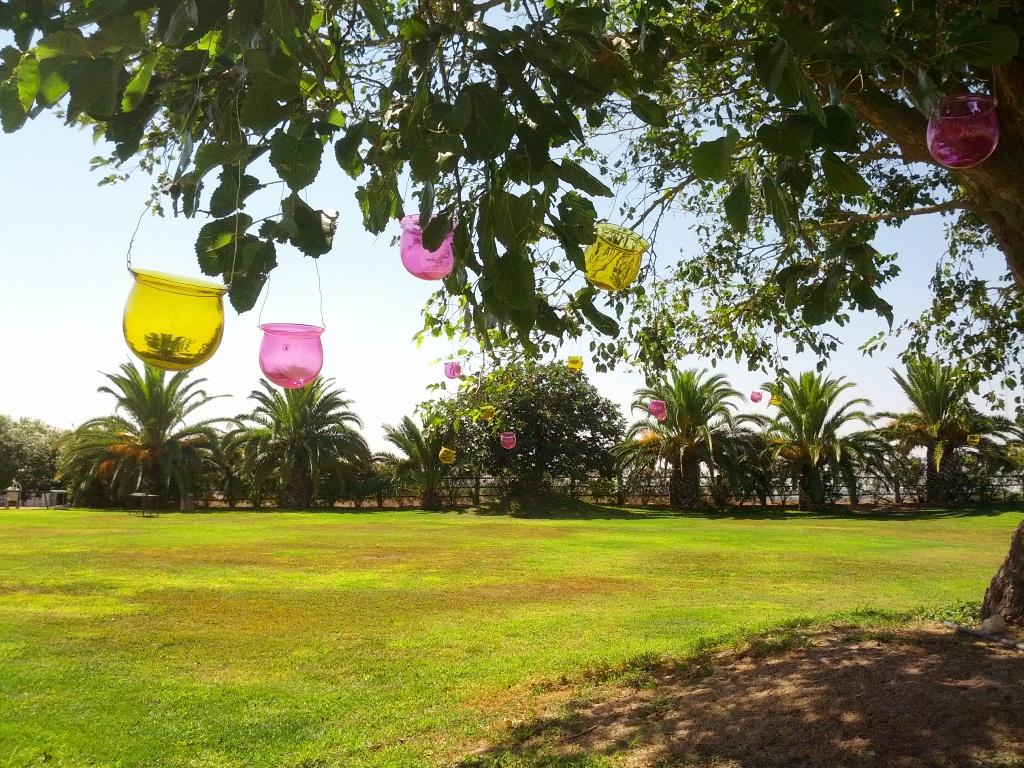 Jardines desde árbol con jaulas y tarros con flores.