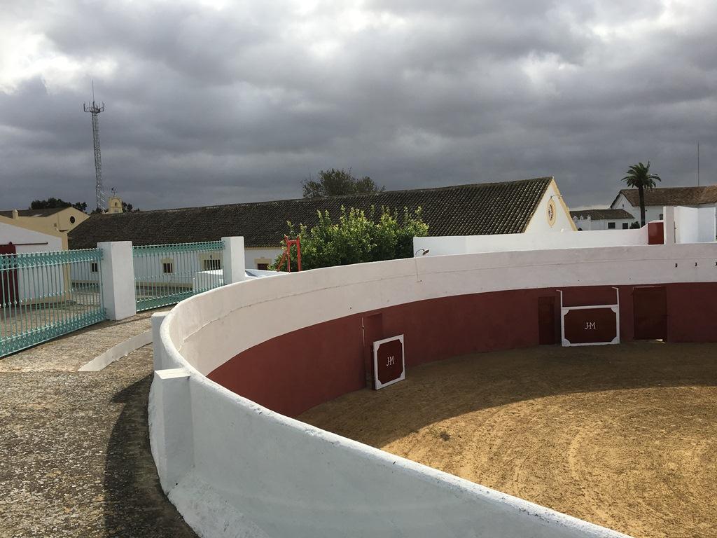 Grada plaza de toros Dehesa Bolaños