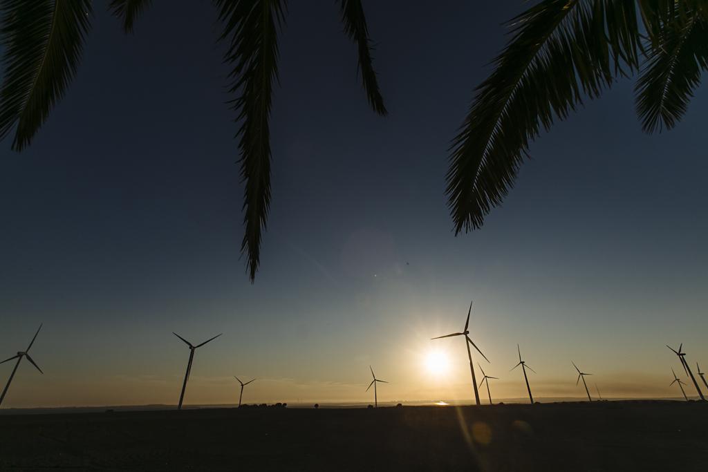 Puesta de sol con bahía de Cádiz de fondo - Boda Isabel & Alberto en Dehesa Bolaños