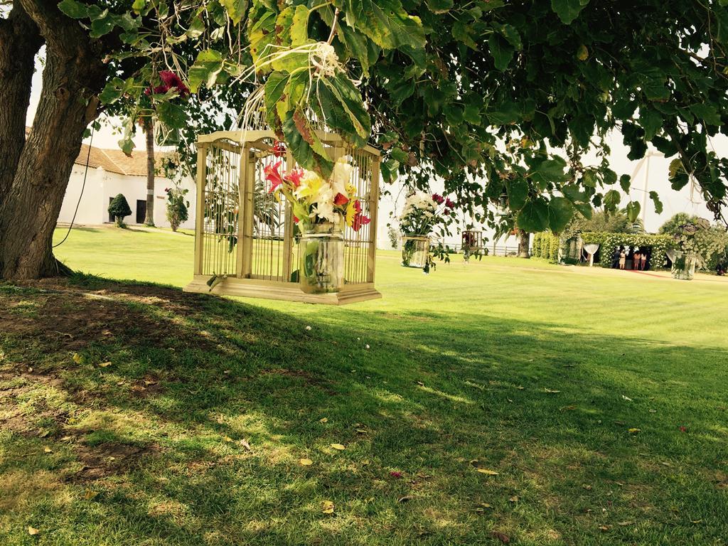 Árbol con jaulas y flores - Boda Isabel & Manolo en Dehesa Bolaños