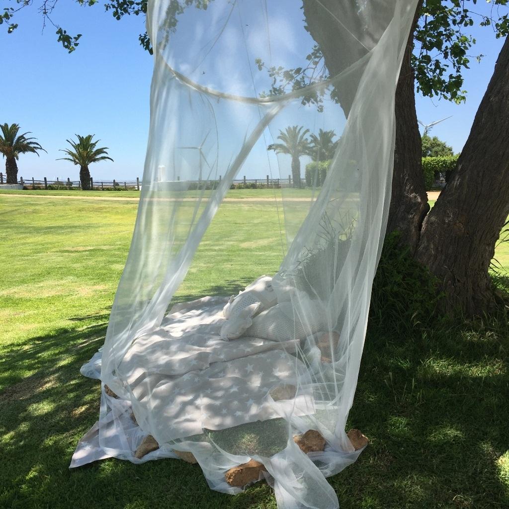 Mosquitera bajo el árbol - Comunión Virginia en Dehesa Bolaños