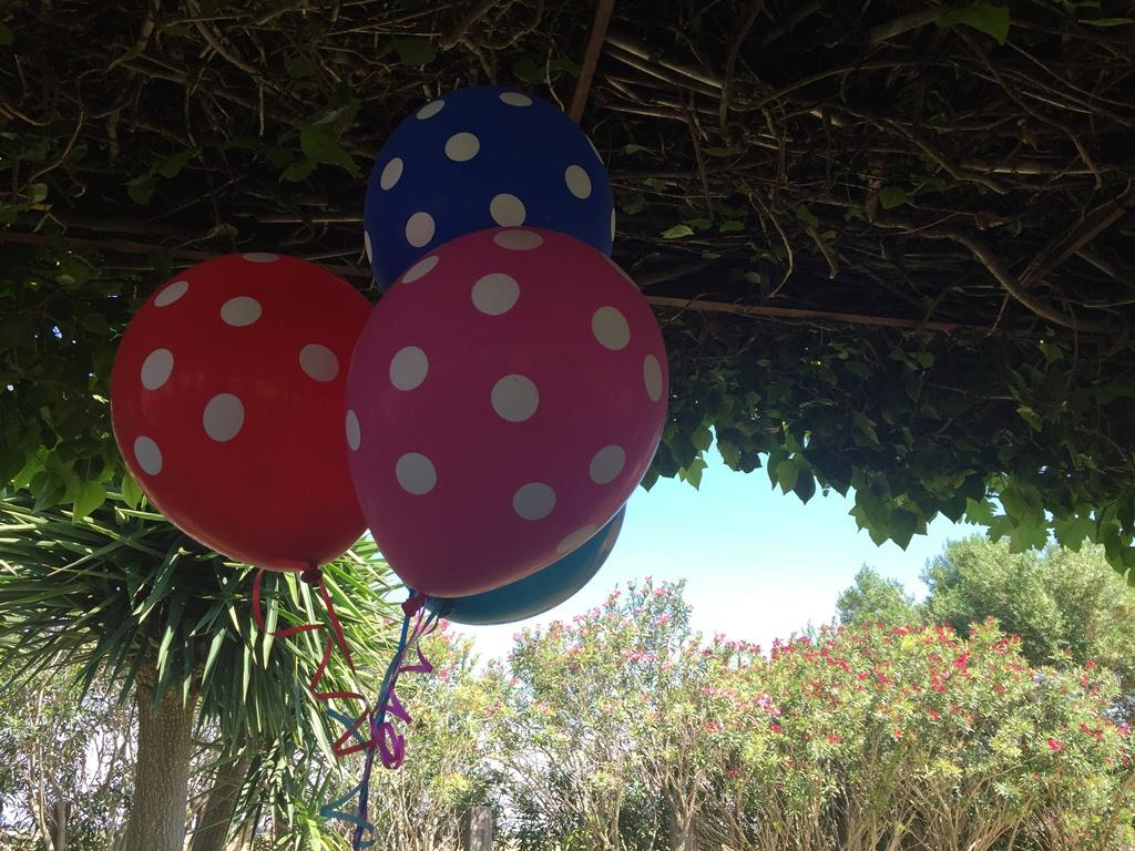 Globos de topos - Comunión Mencía en Dehesa Bolaños