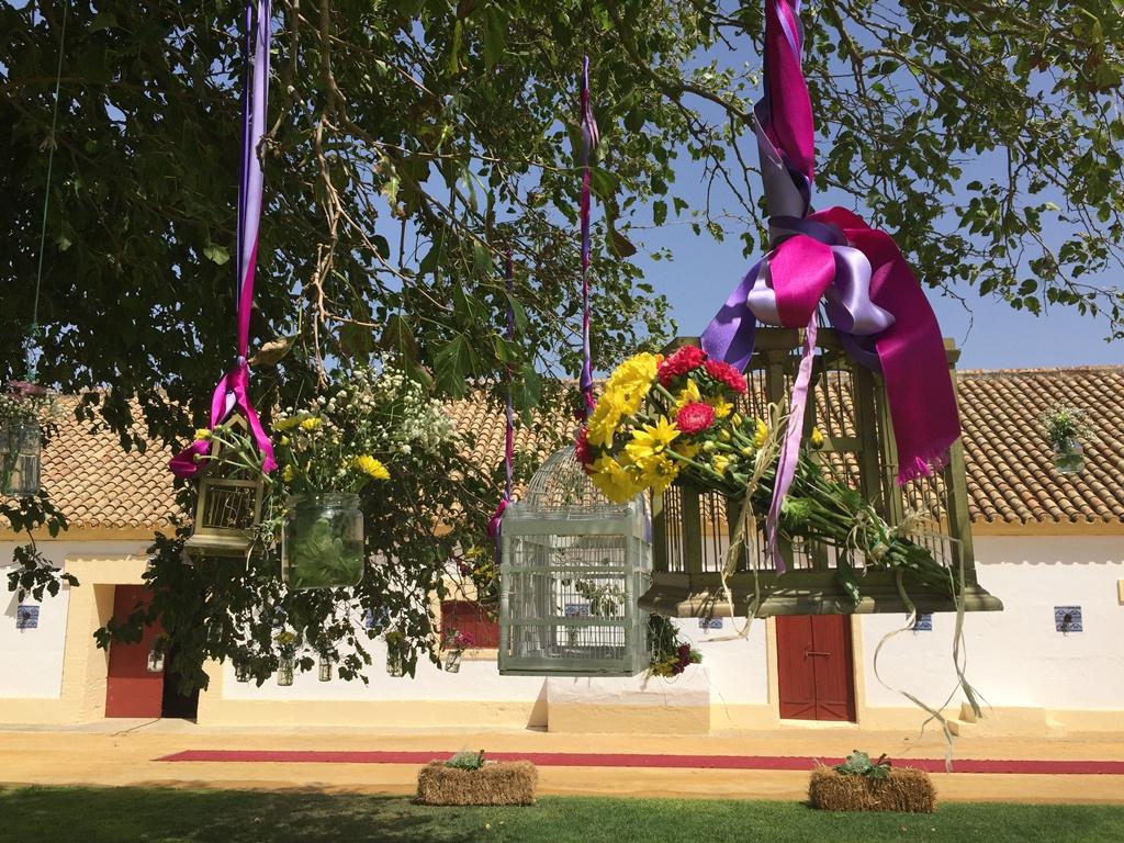 Jaulas en árbol - Boda Lorena & Jesús en Dehesa Bolaños