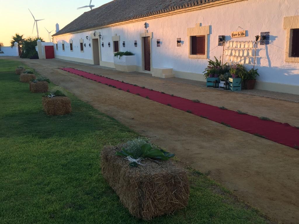 Camino de alpacas y alfombra - Boda María & Luis en Dehesa Bolaños