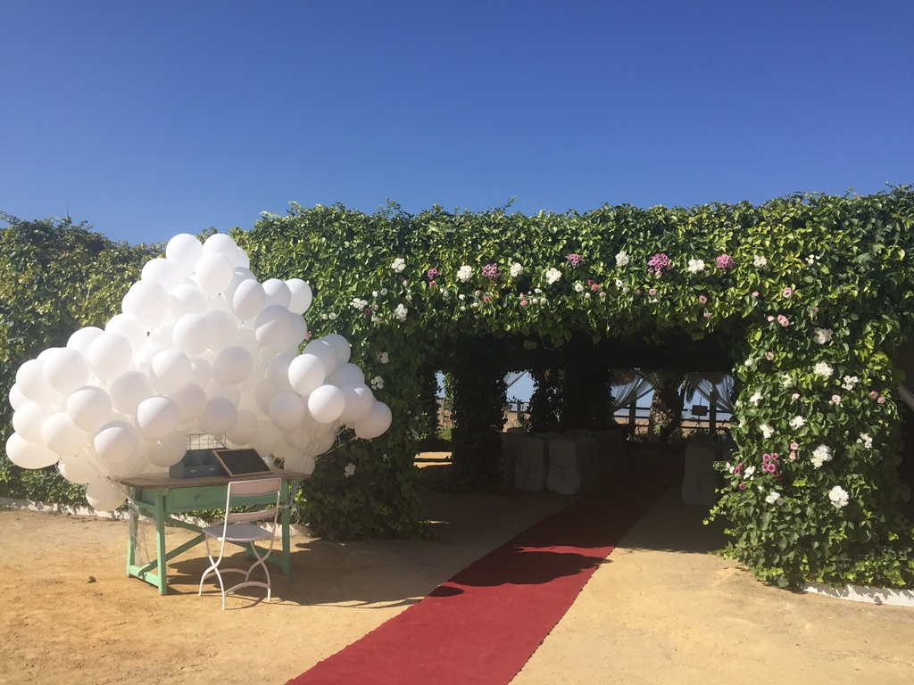 Entrada con globos ceremonia civil - Boda Mamen & Carlos en Dehesa Bolaños