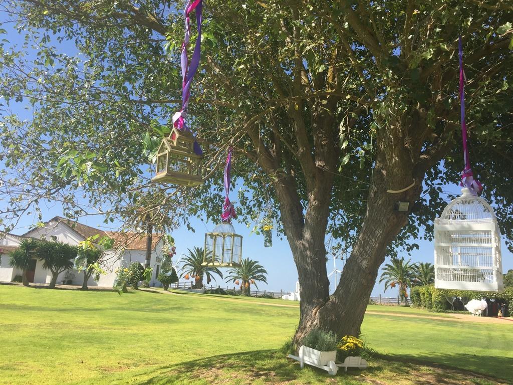 Árbol con jaulas y flores en tarros de cristal - Boda Mamen & Carlos en Dehesa Bolaños