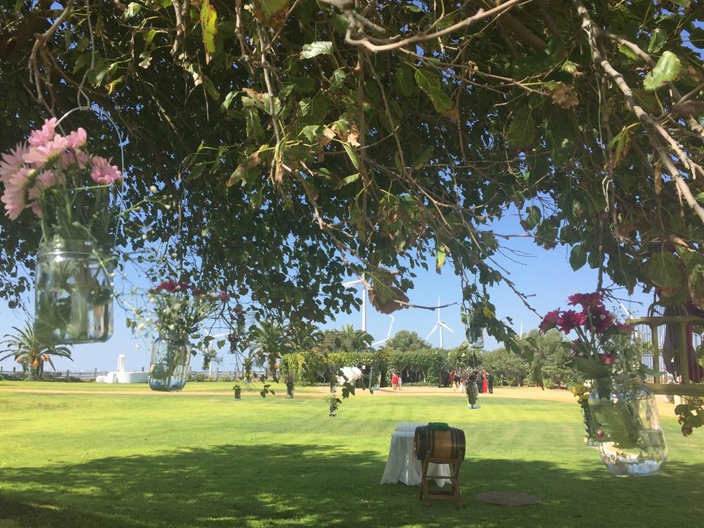 Venenciador bajo el árbol - Boda Mamen & Carlos en Dehesa Bolaños