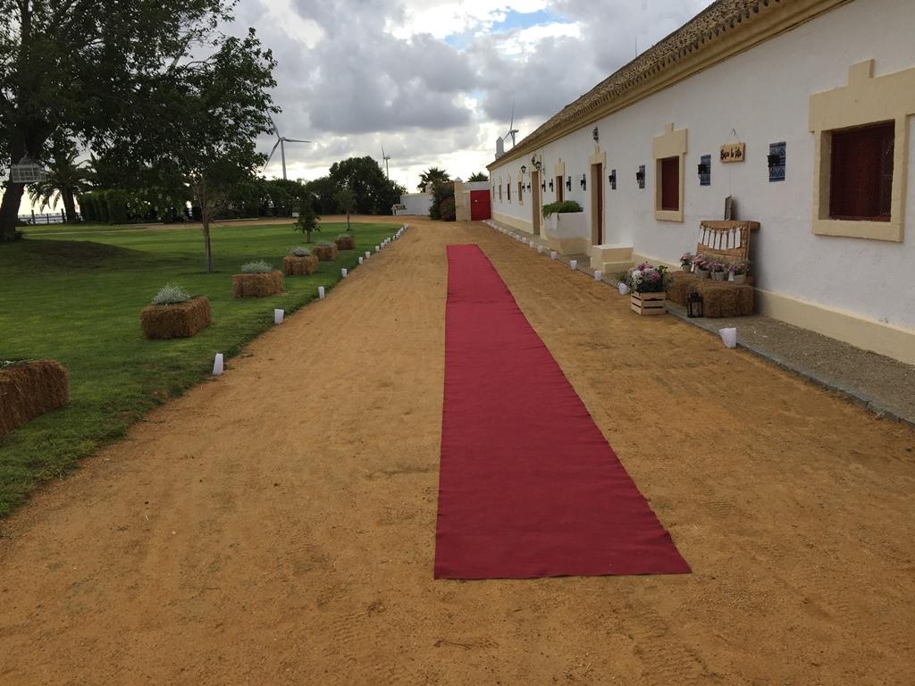 Entrada novios con alfombra - Boda Silvia & Esteban en Dehesa Bolaños