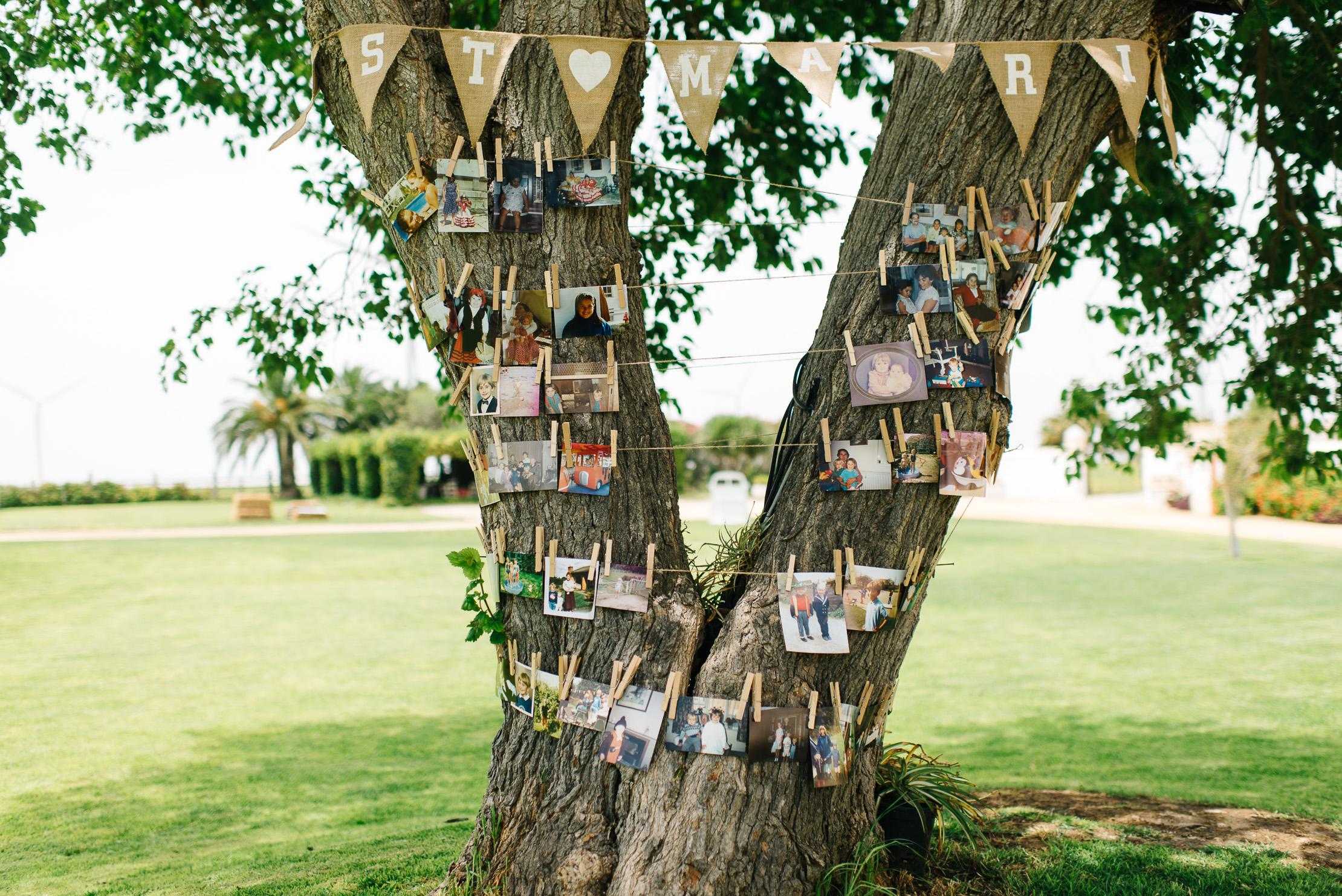 Árbol de los deseos con fotos - Boda Inma & Ronan en Dehesa Bolaños